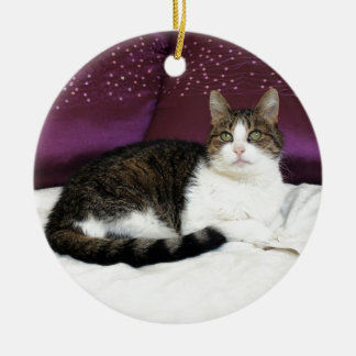 Tiger Cat Christmas Ornament