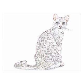 Tiger Cat Watercolor Postcard