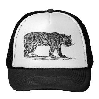 tiger-clip-art-1 hats
