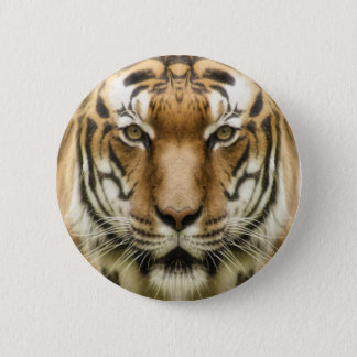Tiger Close-Up buttons