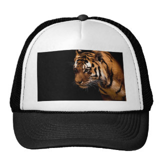 TIger Close Up Cap