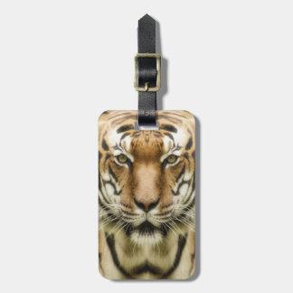 Tiger Close-Up custom luggage tag