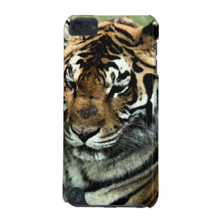 Tiger-Close-up iPod Touch 5G Case