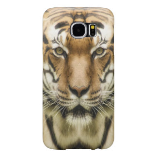 Tiger Close-Up phone cases