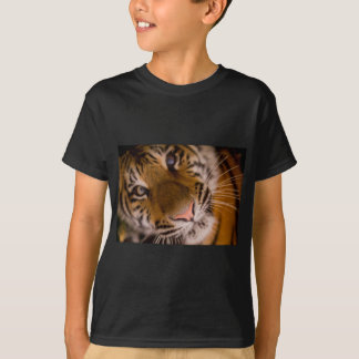 Tiger Close-Up View Shirt