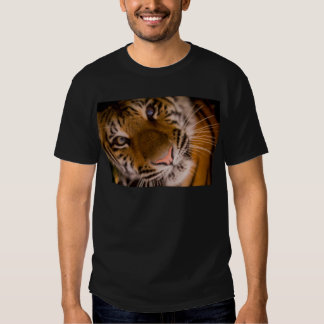 Tiger Close-Up View T Shirt