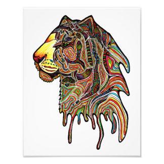 Tiger Color Photo Art