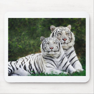 tiger couple mouse pad