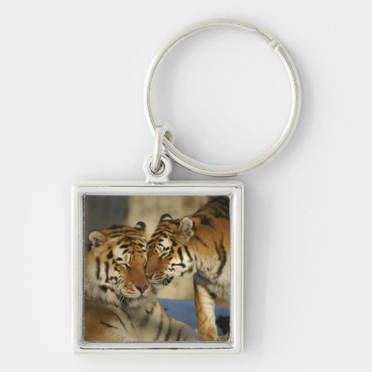 Tiger Couple Silver-Colored Square Key Ring
