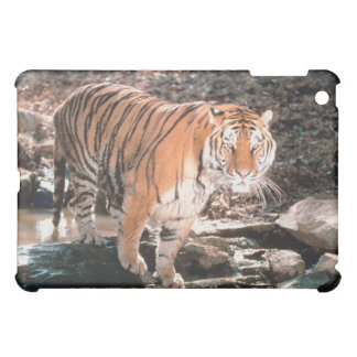 Tiger crossing stream iPad mini case
