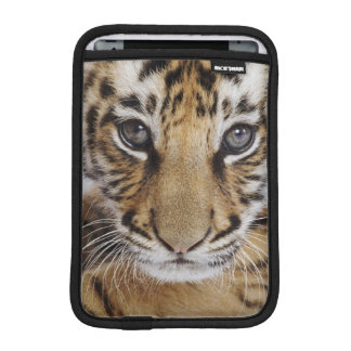 Tiger Cub (2 Month Old) Sleeve For iPad Mini