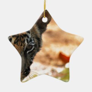 Tiger Cub Ceramic Star Decoration