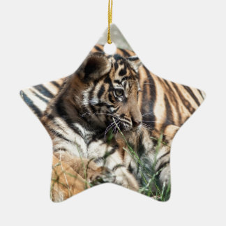 Tiger Cub Christmas Ornament