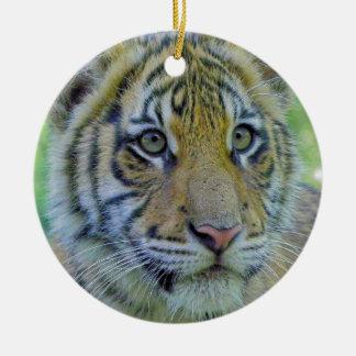 Tiger Cub Close Up Portrait Round Ceramic Decoration