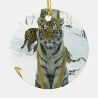 Tiger Cub In Snow Portrait Christmas Ornament