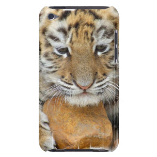 Tiger Cub  iTouch Case Barely There iPod Cases