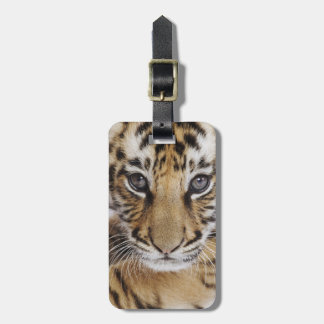 Tiger Cub Luggage Tag