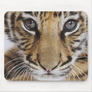 Tiger Cub Mouse Mat