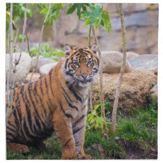 Tiger cub napkin