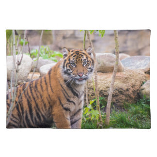Tiger cub placemat