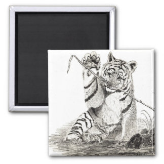 Tiger cub playing magnet