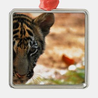 Tiger Cub Silver-Colored Square Decoration