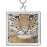 Tiger Cub Sterlng Silver Necklace