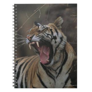Tiger Cub Yawning Spiral Notebook