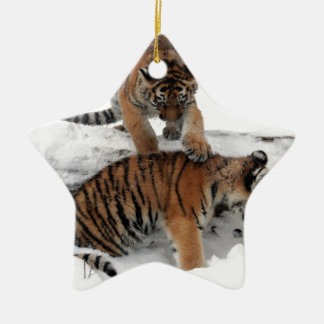 Tiger cubs in snow ceramic star decoration