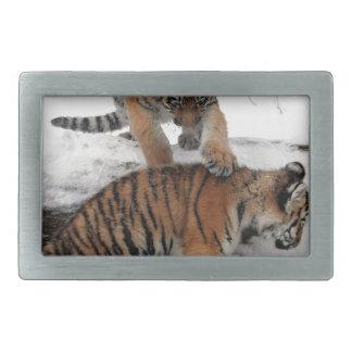 Tiger cubs in snow rectangular belt buckles