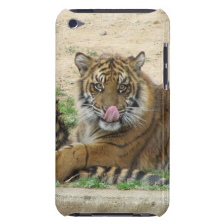 Tiger Cubs iTouch Case