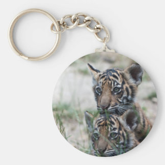 Tiger cubs keychain