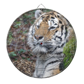 Tiger Dartboards