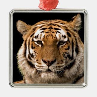 Tiger Design Christmas Ornament