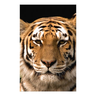 Tiger Design Stationery