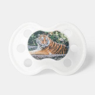 Tiger Dummy