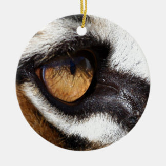 Tiger Eye Christmas Ornament