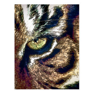 Tiger Eye Postcard