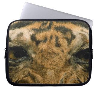 Tiger eyes laptop sleeves