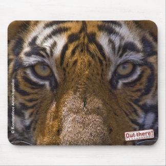 Tiger Eyes Mouse Mat