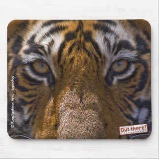 Tiger Eyes Mouse Pad