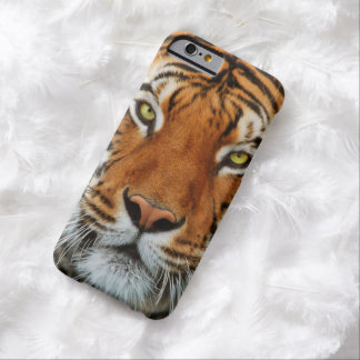 Tiger Face Barely There iPhone 6 Case