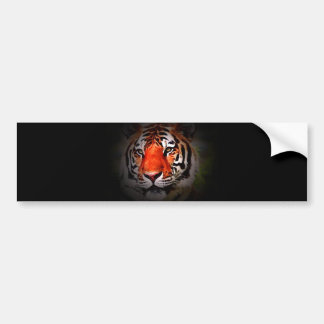 Tiger Face Bumper Sticker