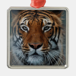Tiger Face Christmas Ornament
