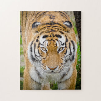 Tiger Face Jigsaw Puzzle