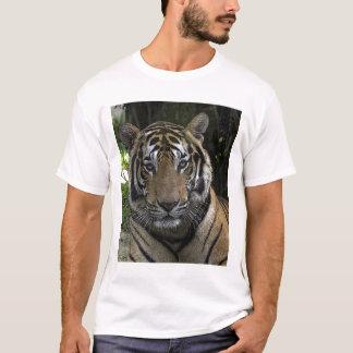 Tiger Face Up Close Shirt