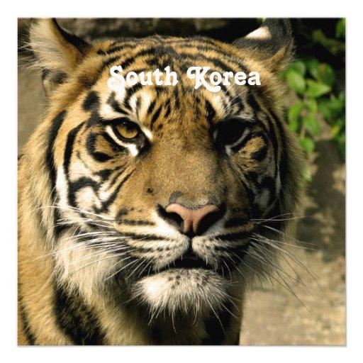 Tiger from South Korea Invite