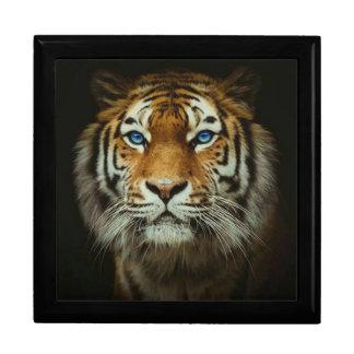 Tiger Gift Box