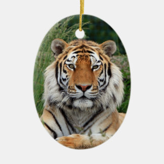 Tiger head beautiful photo hanging ornament