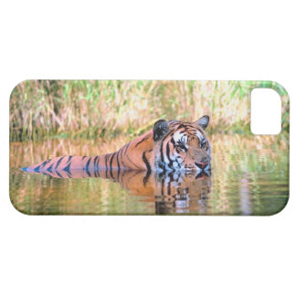 Tiger in lake iPhone 5 case